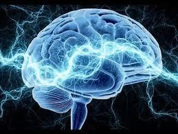 Мозг обрабатывает слова как изображения