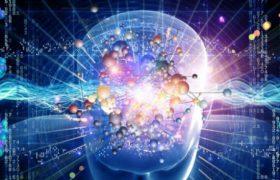 Мозговые волны помогут найти преступника