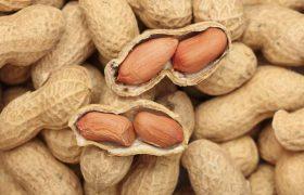 Орехи и арахис особым образом влияют на мозг