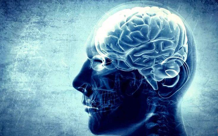 Ученые нашли способ остановить старение мозга