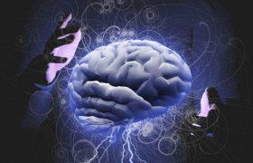 Пароксизмальные события: эпилепсия или синкопа