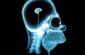 Мозг умирающего человека позволяет слышать происходящее вокруг него