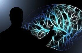 Ученые успешно вживили в мозг чип, улучшающий память