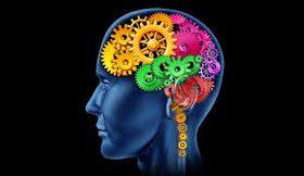 Стрессы разрушают мозг