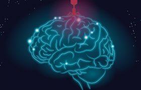 Болезнь Альцгеймера может вызываться вирусом герпеса, заявляют ученые