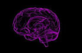 Ученые: вспышки света заставляют мозг работать быстрее
