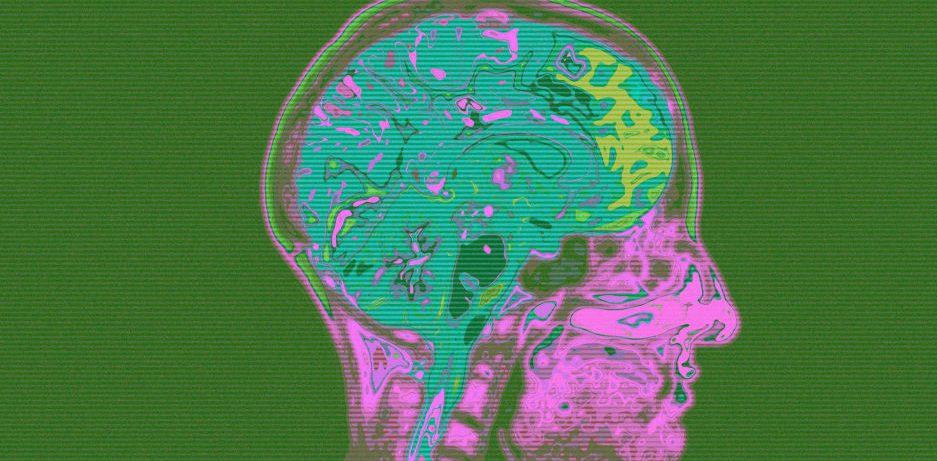 Как заставить свой мозг учиться быстрее