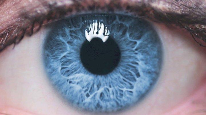 Семь доказательств того, что ваши глаза вас обманывают