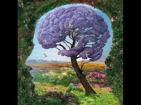 Учёные: Особая кислота поможет разогнать мозг