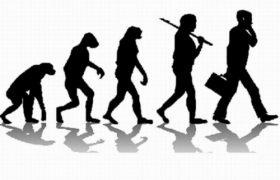 Мозг остановился в эволюционном развитии 50 тысяч лет назад — эксперты