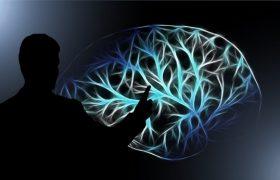 Разбудить мозг, или Как социально значимые люди влияют на окружающих