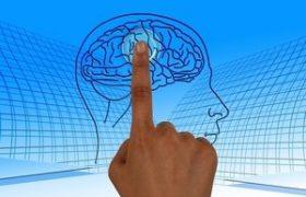 Даже мысль о стрессе парегружает мозг