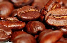 Ученые выяснили, что кофе сжимает мозг человека