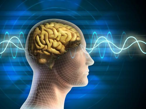 Учёные: мозг человека «расслабляется» 4 раза в секунду