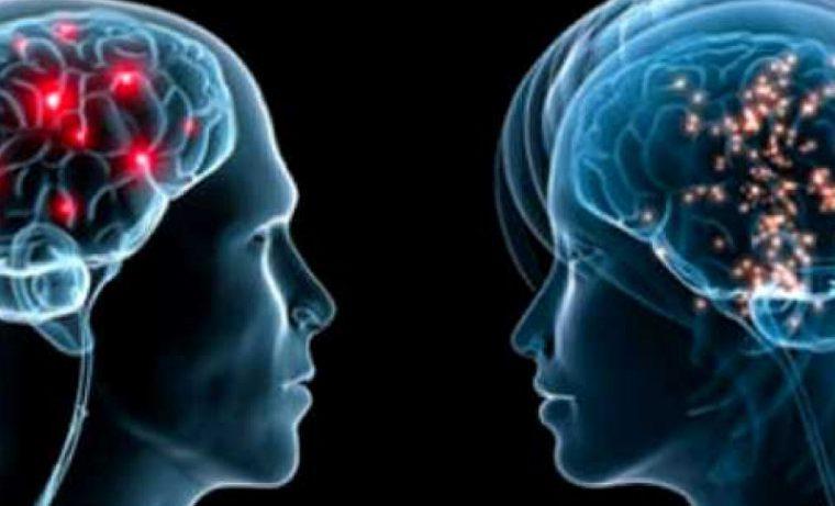 Учёные доказали, что мозг женщин «слабее», чем у мужчин
