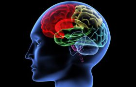 Пять упражнений, которые заставят мозг работать