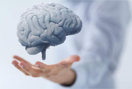 Советы российского учёного помогают остановить старение мозга