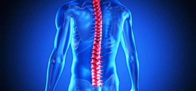 Повреждение спинного мозга – не приговор