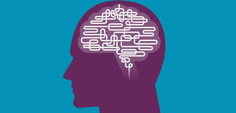 Зачем ученые исследуют человеческий мозг и что знают о нем на самом деле