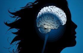 Как сохранить молодость мозга