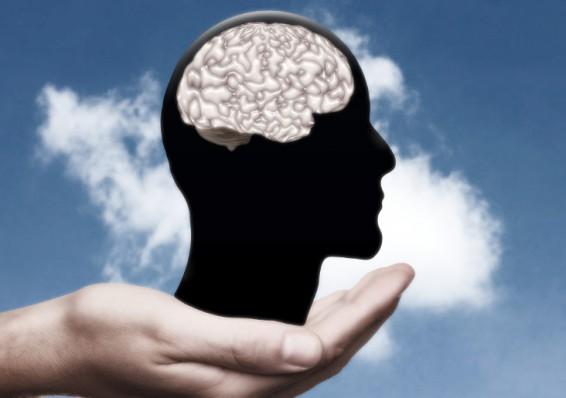 Что такое гигиена мозга
