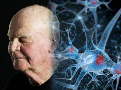 Назван способ затормозить старение мозга
