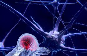 Открытия нейро— когнитивных наук, увеличивающие эффективность труда