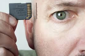 Плохая память и маленький мозг: учёные рассказали, чем опасен стресс