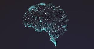 Обнаружен ранее неизвестный участок мозга