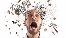 Стресс, со слов исследователей, уменьшает мозг и снижает интеллект