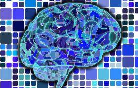 Учёные научились доставлять лекарства в мозг с помощью ультразвука