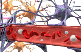 Ученые обнаружили «микрофлору мозга»
