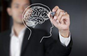 Ученые: мозг может прогнозировать будущее благодаря времени и ритму