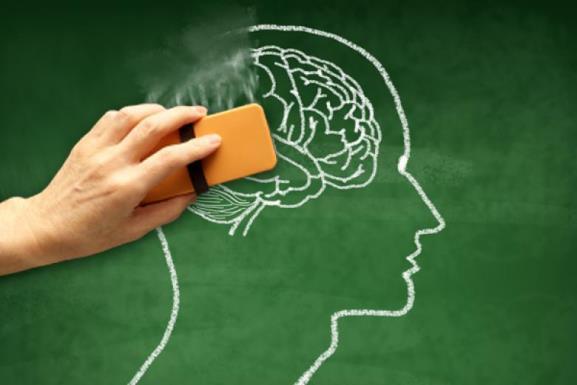 Ученые выяснили, как мозг запоминает и забывает информацию