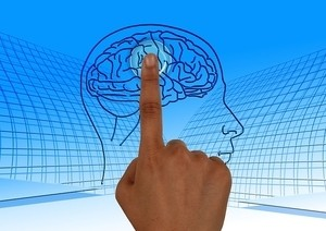 Как же наш мозг сохраняет номера телефонов?