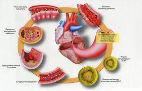 Сниженный холестерин при использовании натуральных средств. Холестерин ЛПВП, ЛПНП, общий: какие значения?