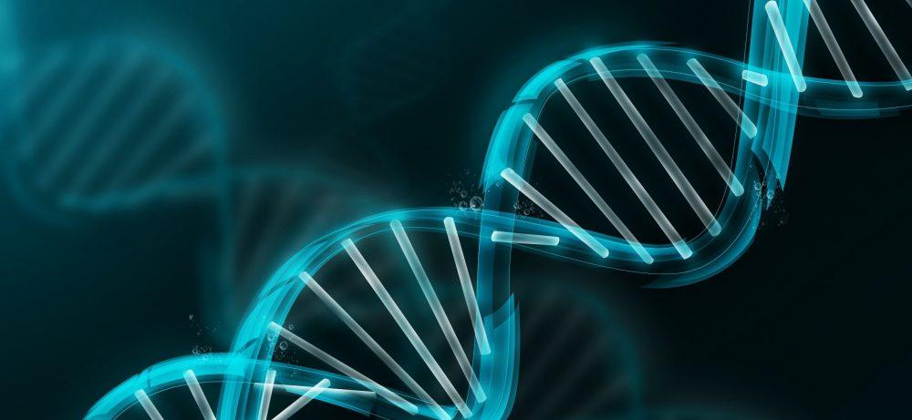 Болезнь Альцгеймера связана с потерей Y-хромосомы у мужчин