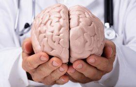 Неврологи показали, как именно никотин воздействует на мозг
