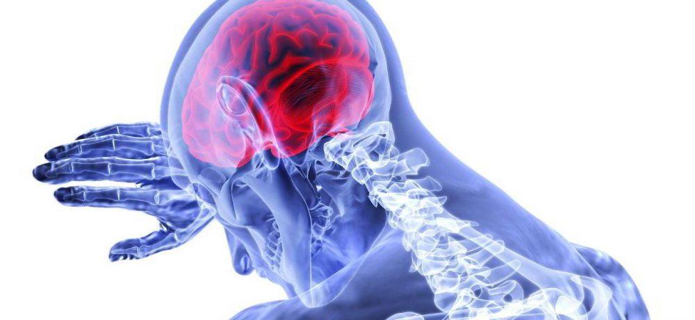 Улучшите работу мозга с ресвератролом и его менее известным родственником