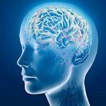 Медики раскрыли левебное воздействие ладана на мозг