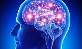 Как активизировать мозг и сохранить память