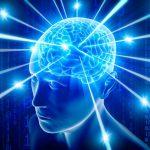 Мозг и эмоциональный голод