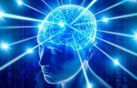 Исследователи: мозг человека развивается вплоть до 30 лет