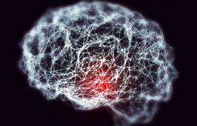 Болезнь Альцгеймера научились выявлять по  свечению лейкоцитов