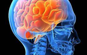 Как витамины группы В укрепляют здоровье мозга, улучшают познание, помогают при проблемах с психикой