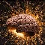 Восстановление мозга при генетических болезнях: первые успехи