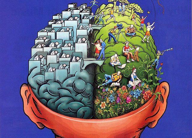 Как головной мозг человека формирует творческие и оригинальные идеи?