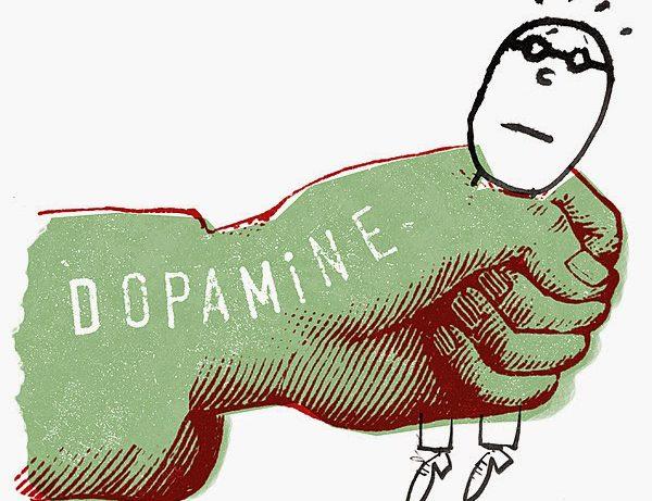Уровень допамина в головном мозге влияет на принятие решений