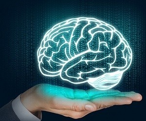 «Мозг. Инструкция по применению. Как противостоять стрессу, используя новые знания о мозге»