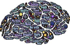 С помощью сканирования мозга можно установить вероятность зависимости от наркотиков